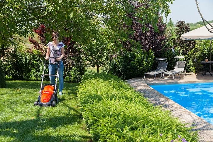 scarifier son gazon collection design inspiration pour le jardin et son compl ment. Black Bedroom Furniture Sets. Home Design Ideas